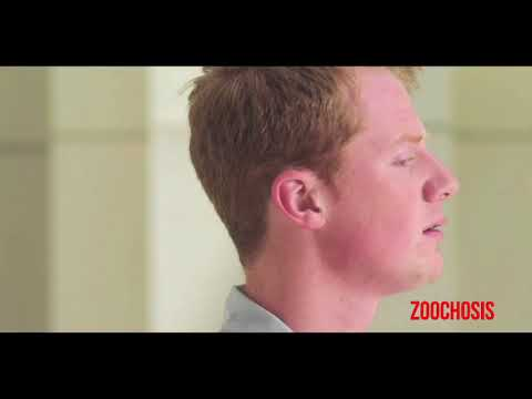 Zoochosis  Escalator