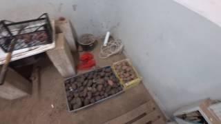 05.04.2017 Обзор склада, перевёз ферму на склад