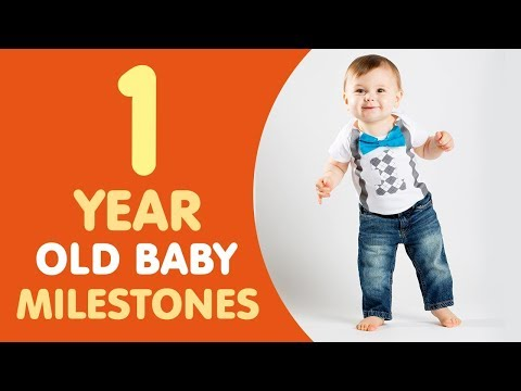 1 Year Old Baby Milestones