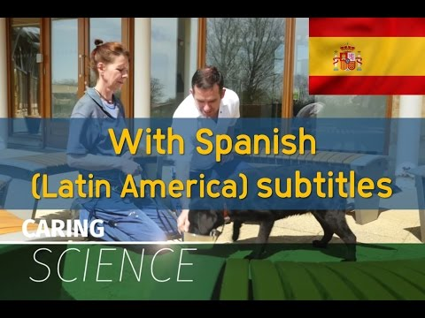 About WALTHAM Centre for Pet Nutrition (with Latin American Spanish subtitles)