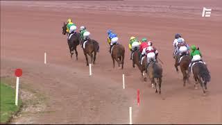 Vidéo de la course PMU PRIX WWW.HIPPODROME-LAVAL.FR