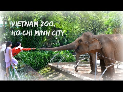 Vietnam Zoo - Ho Chi Minh City (Saigon) - 2015