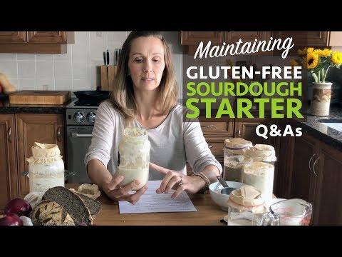 Maintaining a Gluten-Free Sourdough Starter Part 2