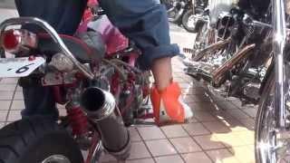 Repeat youtube video Chibikko gang Red Monkey HONDA チビッコギャング レッドモンキー カスタム 阪和鳳自動車工業専門学校