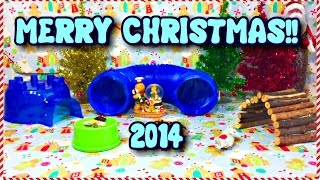Merry Christmas 2014 | Hamster Surprise Thumbnail