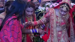 wedding jay mala highlight song Roshani weds abhinandan