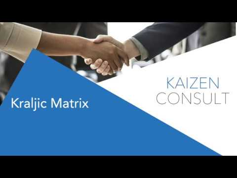 Kaizen Consult - Procurement Strategy using Kraljic Matrix