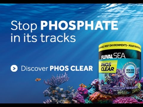 fluval sea phos clear phosphate remover youtube