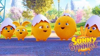 Cartoons for Children | SUNNY BUNNIES - BABY BUNNIES | Funny Cartoons For Children