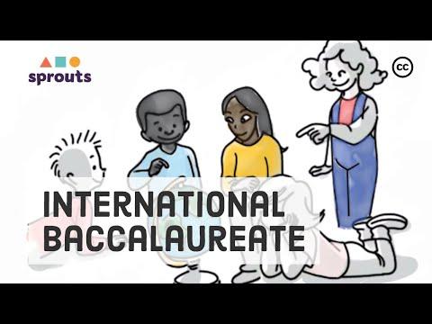 The IB Program: The Global School Curriculum