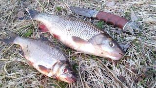 Рыбалка на донки Начало мая 2020 река
