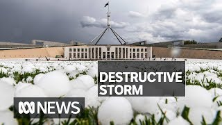 Vehicles smashed as hailstones the size of golf balls pelt Canberra | ABC News