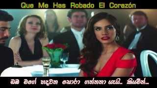 El  Perdedor  ► Enrique Iglesias ft Marco Antonio Solís Spanish Song with Sinhala Translation Lyrics