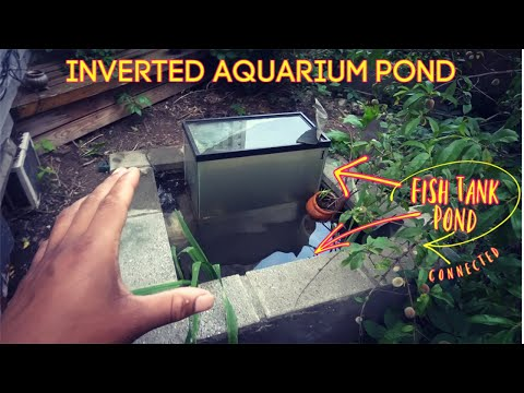 Creating An Inverted Aquarium For My Pond (Fish Tower)
