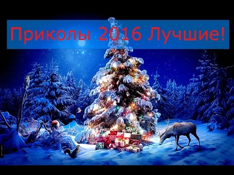 Новогодние приколы - БУГАГА!