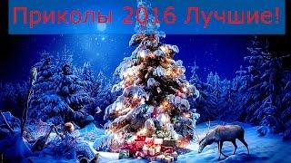 Приколы 2016  лучшие! | Новый год 2017