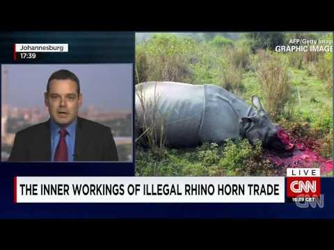 South Africa Battles Rhino Poaching