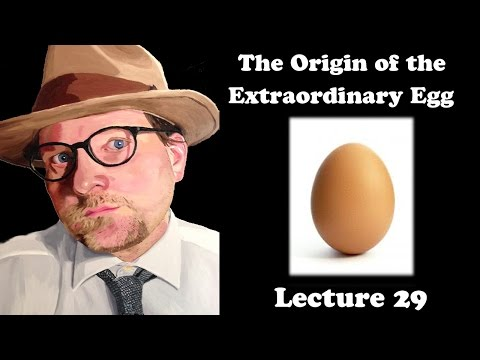 Lecture 29 The Origin of the Extraordinary Egg