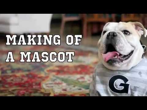 Making of a Mascot: Georgetown's JJ the Bulldog