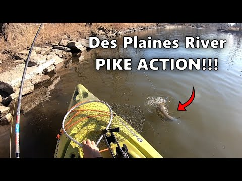 Fishing The Des Plaines River For Northern Pike!!! (Winter River Fishing)