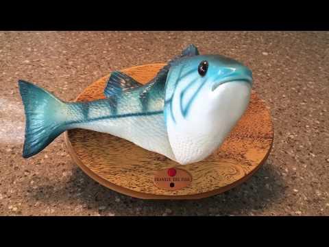 Frankie The Singing Fish