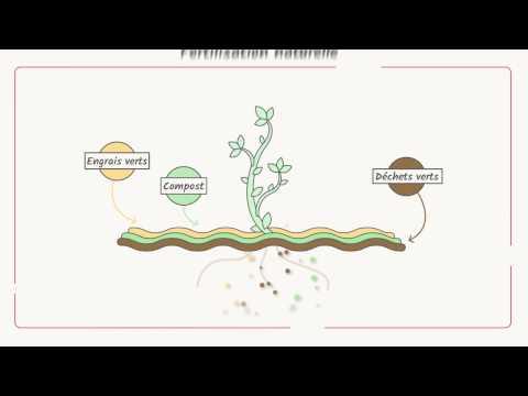Vidéo explicative : Qu'est-ce-que la certification biologique ?
