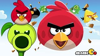 Angry Birds vs Peashooter - Angry Birds & Plants vs Zombies All Levels