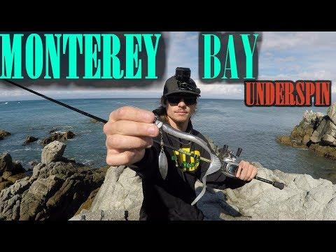WEST COAST | CLIFF OCEAN SWIMBAIT FISHING