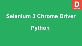 Selenium 3 Python Chrome Driver
