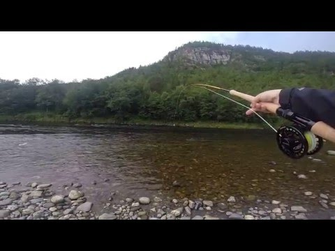 Fly fishing i River Orkla Norway