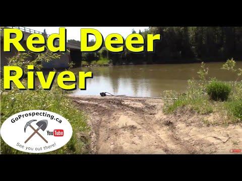 Gold Prospecting Red Deer River June 2017
