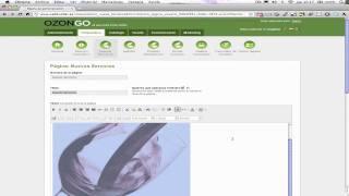 Editar Página de contenido Libre - CMS OZONGO.com
