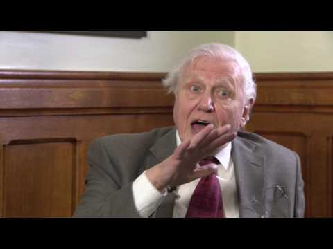 RTS Sir David Attenborough in conversation with Andrew Marr - Full Session