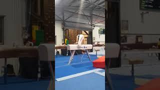 Naor Pommel Routine - 2018 Grand Prix 3