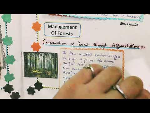 Environmental Education B.Ed File   EVs B.Ed File   2019