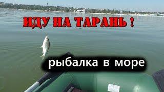 Иду на тарань ! Ловля на поплавок. Рыбалка в море.