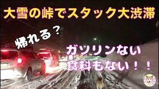 【わんこと車中泊】災難だらけの雪山車中泊