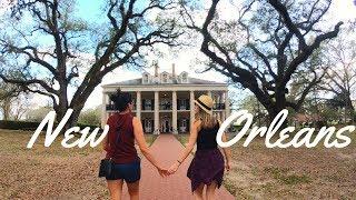 New Orleans Top Tours: Oak Alley Plantation/ Swamp Tour/ French Quarter | 4K