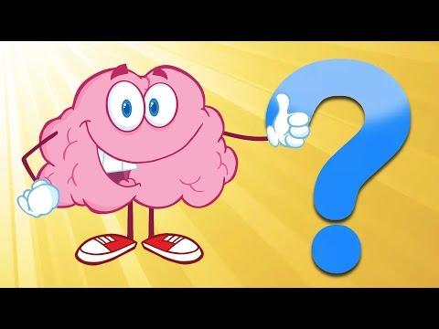 İnsan Beyni ile İlgili 14 Şaşırtıcı Gerçek