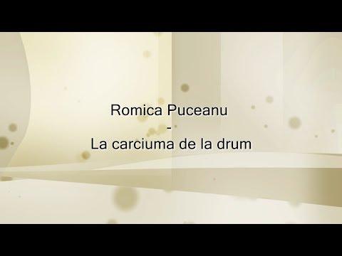 Romica Puceanu - La carciuma de la drum (versuri, lyrics, karaoke)