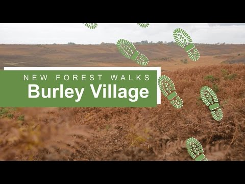 New Forest walks: Burley village