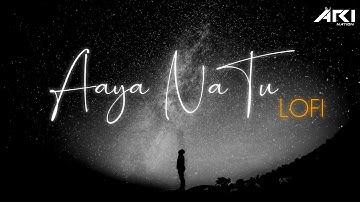 Aaya Na Tu | Lofi | Dj Ari Nation