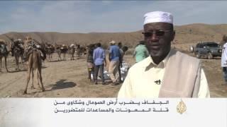 موجة جفاف تضرب مناطق واسعة بأرض الصومال