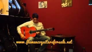 Guitarra flamenca Hnos. Sanchis Lopez 2F 2013 (Negra) en venta