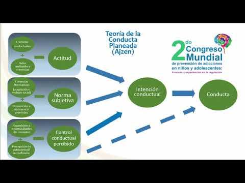 2-8-resultados-de-la-evaluacion-del-modelo-ambar-dra-maria-elena-medina-mora-dra-solveig-erendira