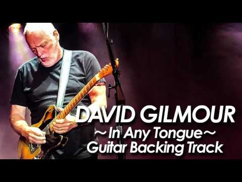 DAVID GILMOUR : PINK FLOYD 『In Any...