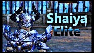 Shaiya Elite - Goddess Battle 60v60