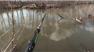 Положил поплавок Карась клюет Весенняя РЫБАЛКА на поплавок 2021 Рыбалка на карася весной
