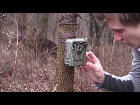 Hinge Cut Camera Check: January