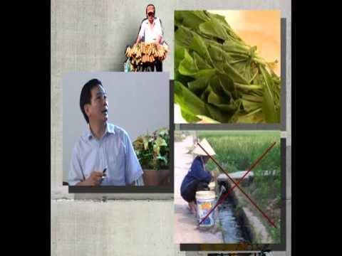 Bao dam attp thuc an duong pho 030713